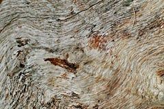 Kunst van hout Royalty-vrije Stock Foto's