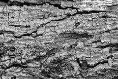 Kunst van hout Stock Fotografie