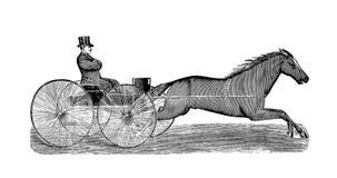 Kunstbeeld Illustratie op witte achtergrond royalty-vrije illustratie