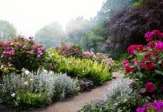 Kunstbloemen in de ochtend in een Engels park Royalty-vrije Stock Foto's