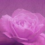 Kunstblumenhintergrund mit rosafarbener Blume Lizenzfreie Stockfotos