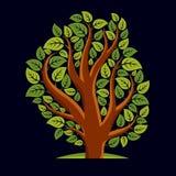 Kunstillustratie van de lente vertakte boom, gestileerd ecologiesymbool Stock Afbeelding