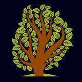 Kunstillustratie van de lente vertakte boom, gestileerd ecologiesymbool Royalty-vrije Stock Afbeeldingen