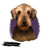 Kunstillustration Zucht Airedales Terrier digitale lokalisiert auf Weiß Nettes inländisches reinrassiges Tier Bingley und Ufer Stockfotografie