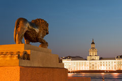 Kunstkamera and Lion statue Stock Photos