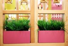 Kunstmatig gras in roze potten Binnenland van het restaurant, koffie stock fotografie