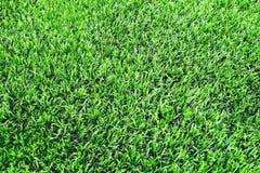Kunstmatig gras van de voetbal & x28; soccer& x29; gebied stock foto's
