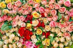 Kunstmatig nam bloemen toe royalty-vrije stock foto