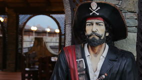 Kunstmatig Pirat-Model stock footage