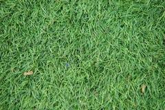 Kunstmatig spoor en gebied met groen die gras met kunstmatig gras wordt gecombineerd royalty-vrije stock foto's