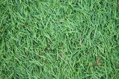 Kunstmatig spoor en gebied met groen die gras met kunstmatig gras wordt gecombineerd stock afbeeldingen