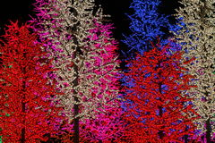 Kunstmatige Lichte Bomen Royalty-vrije Stock Fotografie