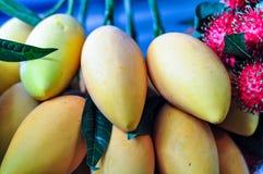 Kunstmatige Mango Dichte Omhooggaand Royalty-vrije Stock Afbeelding