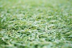 Kunstmatige synthetische grasachtergrond, Stock Fotografie
