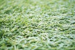 Kunstmatige synthetische grasachtergrond, Stock Foto's