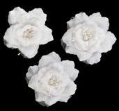 Kunstmatige witte geïsoleerde rozen Stock Fotografie