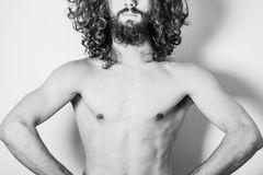 Kunstporträt des gutaussehenden Mannes lizenzfreie stockfotos