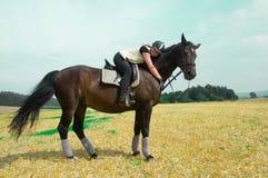 Kunstreiterin und Pferd. Stockfoto