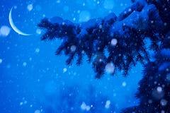 Kunstschnee-Weihnachtsbaummagie beleuchtet Hintergrund Stockfotos