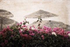 Kunstwerk in retro stijl, bloemen dichtbij een strand Stock Afbeeldingen