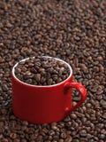 Kupa av kaffe Royaltyfria Foton