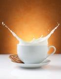 Kupa av mjölkar färgstänk med kexen Royaltyfri Bild