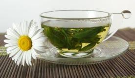 Kupa av tea och chamomile royaltyfri fotografi