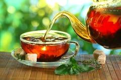 Kupa av tea och teapoten. Arkivfoto