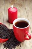 Kupa av tea och torr svart tea och undersöka Royaltyfria Foton
