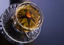 Kinesisk blommatea i en kupa Royaltyfri Foto