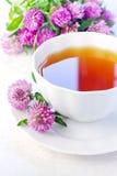 Kupa av växt- tea Royaltyfria Bilder