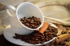 Kupa med kaffebönor Royaltyfri Bild