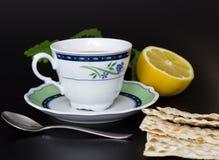 Kupa med tea royaltyfri foto