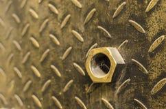 Kupfer und Nuss lizenzfreie stockbilder