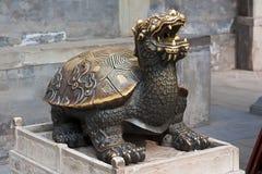 Kupferne Schildkröte Lizenzfreie Stockfotos