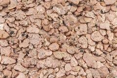 Kupferne Stücke Lizenzfreie Stockfotos