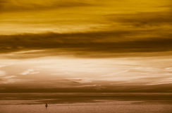 Kupferner Himmel Stockbilder