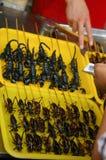 kupienie skorpiony fotografia royalty free