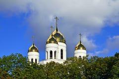 Kupol av domkyrkan av Kristus frälsaren. Kaliningrad Ryssland fotografering för bildbyråer