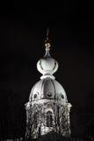 kupol smolny domkyrka Royaltyfri Fotografi