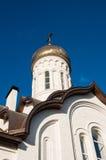 Kupolen av den kristna kyrkan Royaltyfri Fotografi