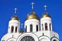 Kupoler av den ryska ortodoxa kyrkan. Domkyrka av Kristus frälsaren. Kaliningrad Ryssland Fotografering för Bildbyråer
