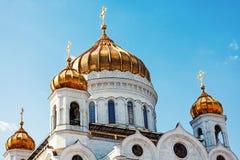 Kupoler av domkyrkan av Kristus frälsaren, Moskva, Ryssland Fotografering för Bildbyråer