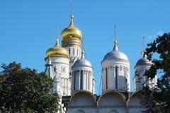 Kupoler av domkyrkor i MoskvaKreml royaltyfri bild