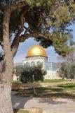 kupolisrael jerusalem rock Fotografering för Bildbyråer