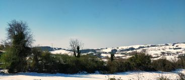 Kupor på snow Arkivbild