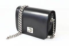 Kupplungs-Tageshandtasche der Frauen glänzende Lizenzfreie Stockfotografie