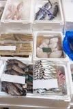 Kupujący odwiedzają ryba i owoce morza produktu sprzedawania pokazu owoce morza Zdjęcie Stock