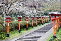 Kurama stock foto's