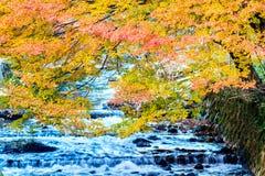 Kurama-dera Stock Images